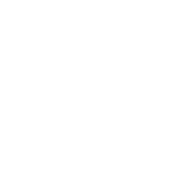 white logo for the city of Palmetto